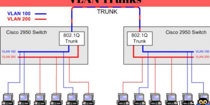 نحوه Access و Trunk کردن پورت ها در سوئیچ های سری SMB