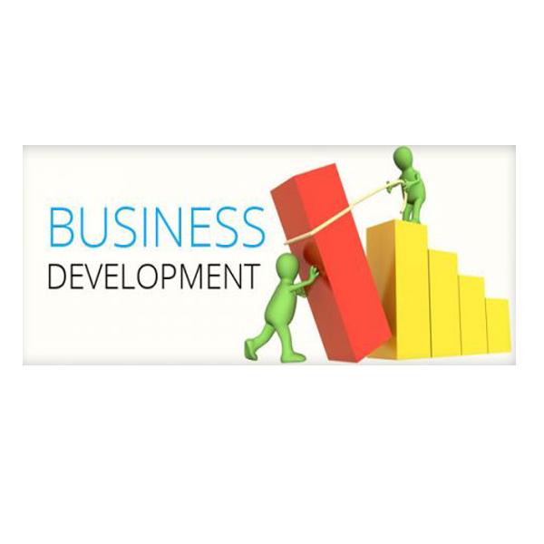 توسعه کسب و کار