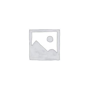 کارت شبکه اترنت